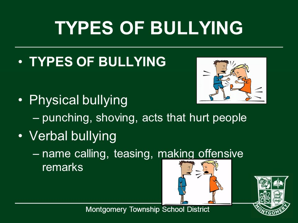 TYPES OF BULLYING TYPES OF BULLYING Physical bullying Verbal bullying