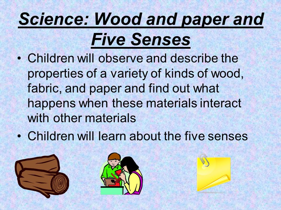 Science: Wood and paper and Five Senses