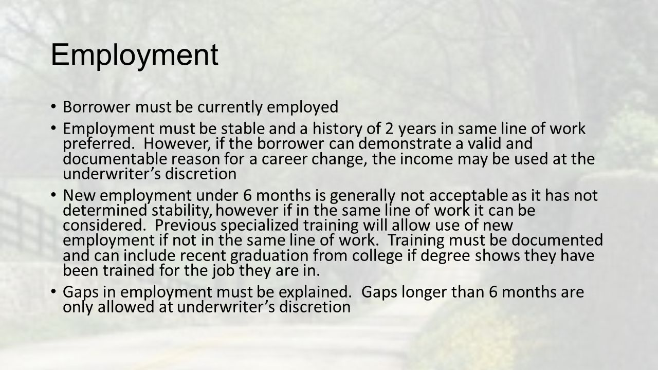 Employment Borrower must be currently employed