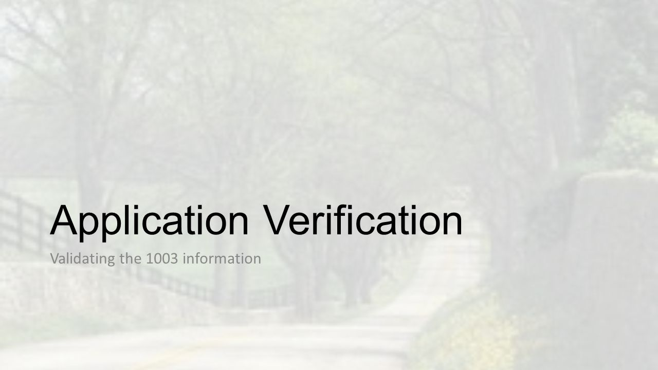 Application Verification
