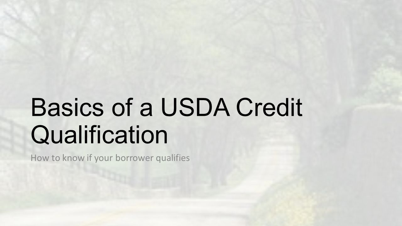 Basics of a USDA Credit Qualification