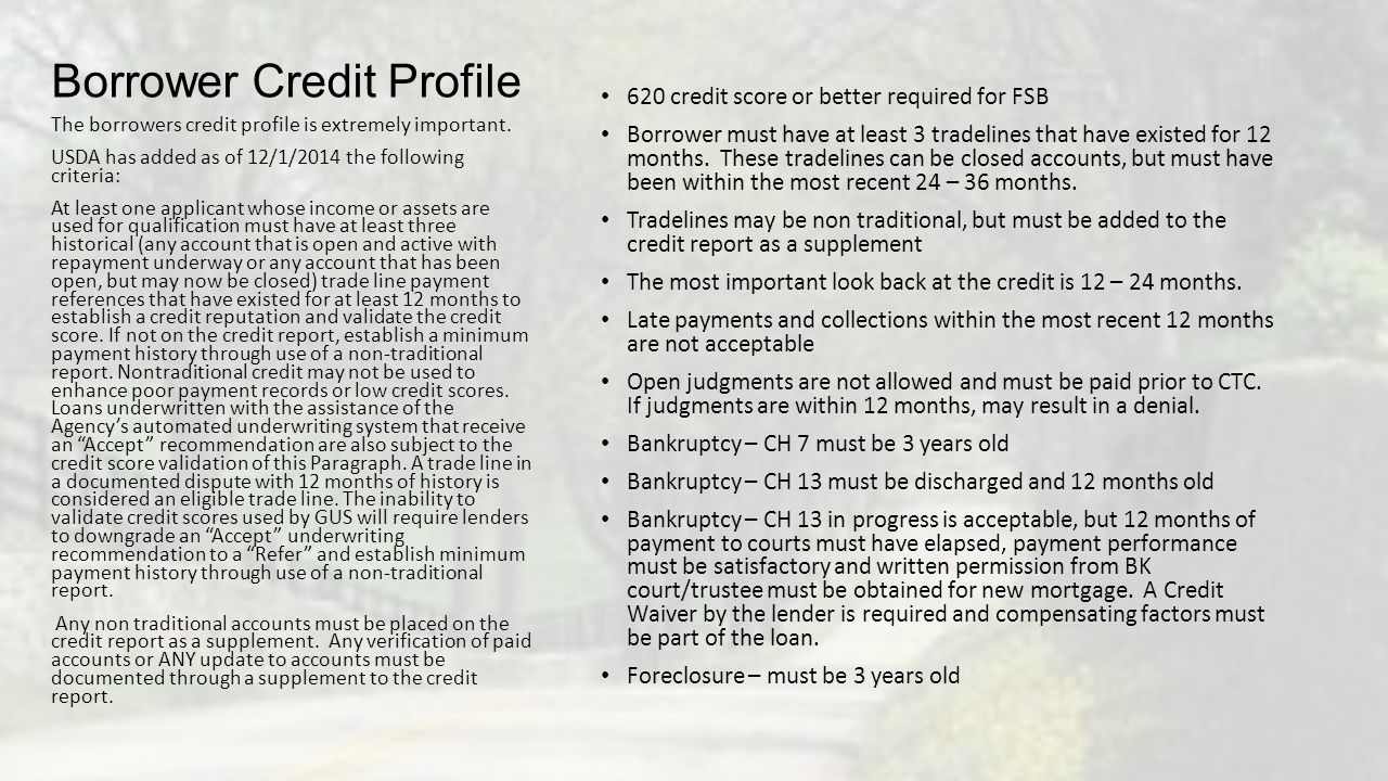 Borrower Credit Profile