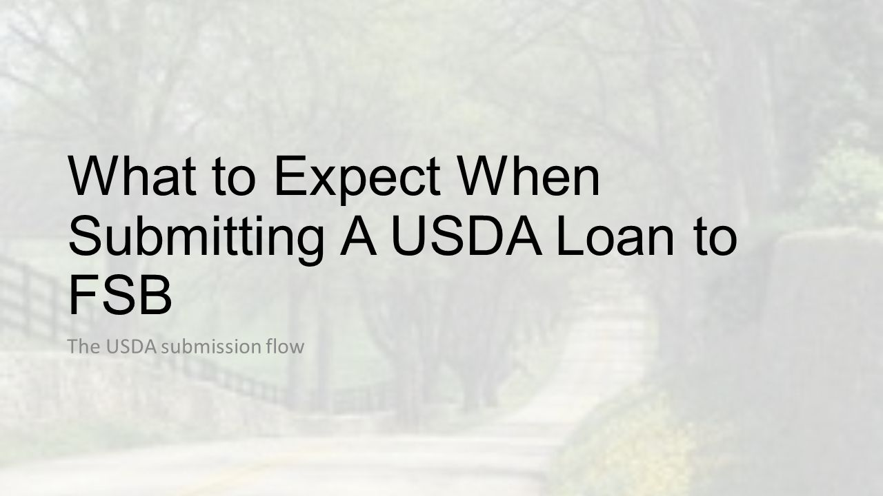 What to Expect When Submitting A USDA Loan to FSB