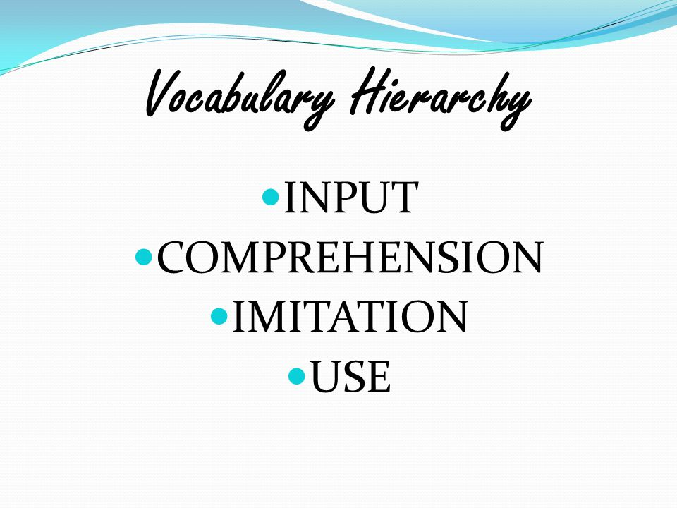 Vocabulary Hierarchy INPUT COMPREHENSION IMITATION USE