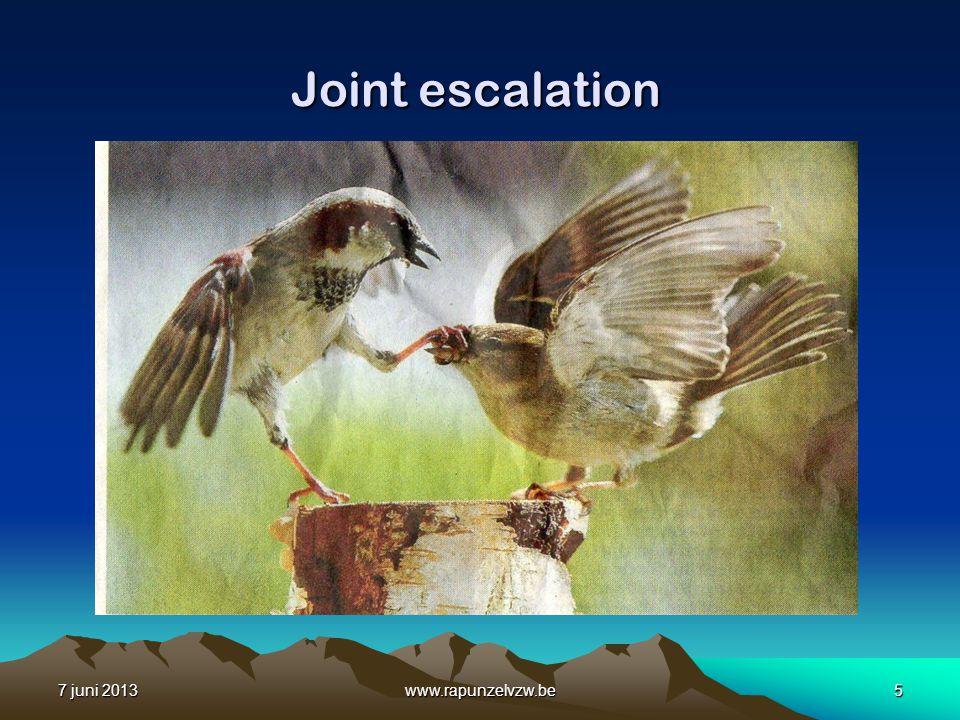 Joint escalation 7 juni 2013 www.rapunzelvzw.be