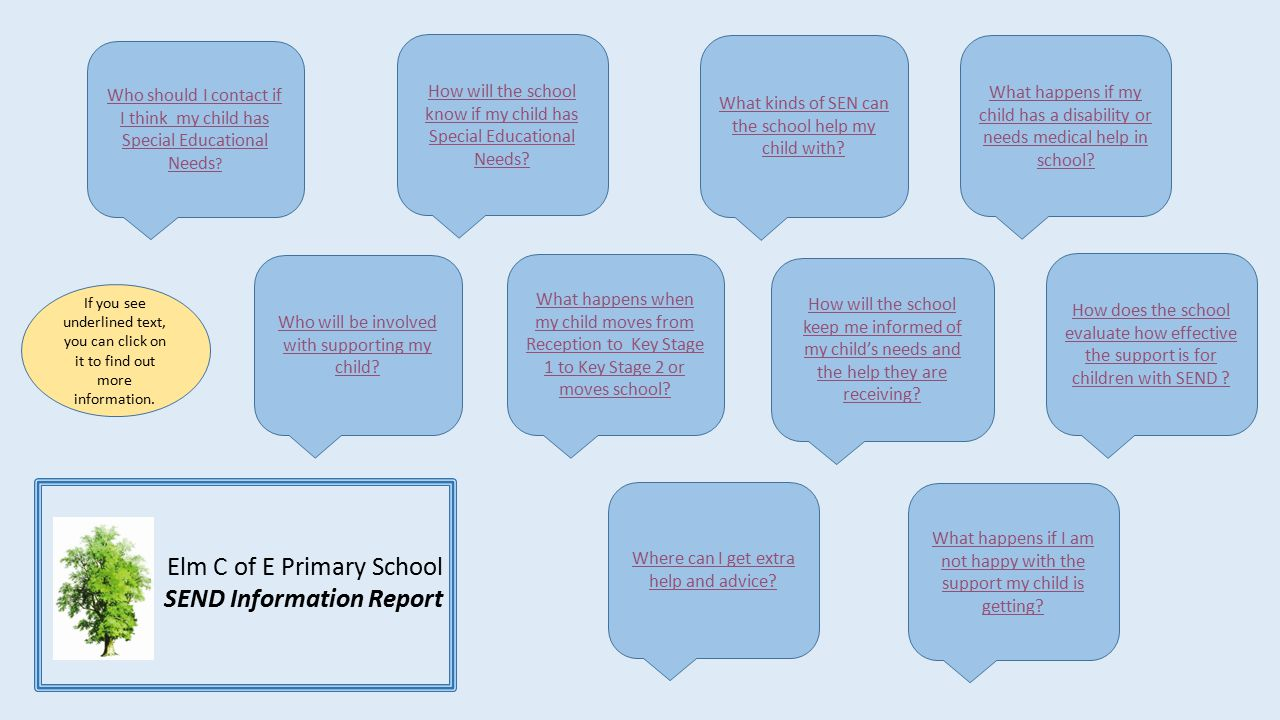 Elm C of E Primary School SEND Information Report