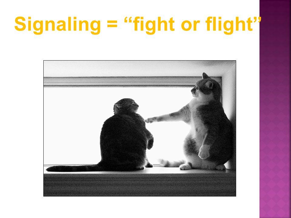Signaling = fight or flight