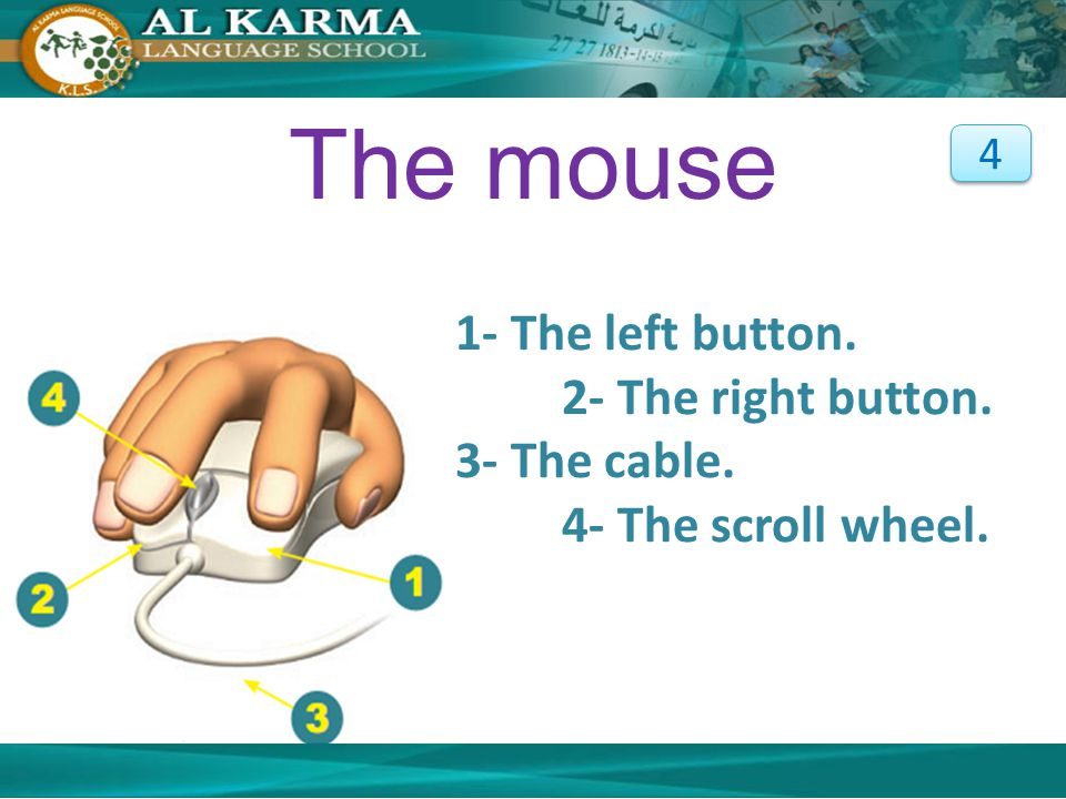 The mouse 1- The left button. 2- The right button.