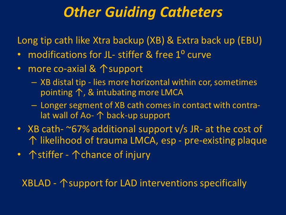 Other Guiding Catheters