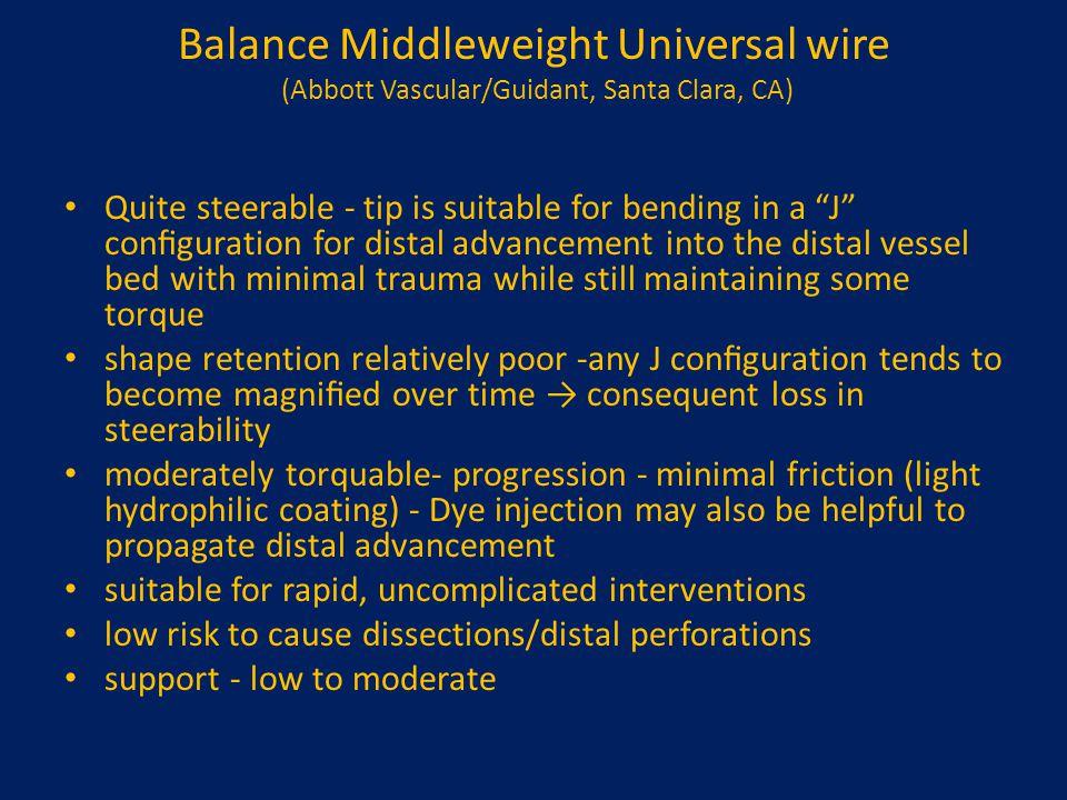 Balance Middleweight Universal wire (Abbott Vascular/Guidant, Santa Clara, CA)