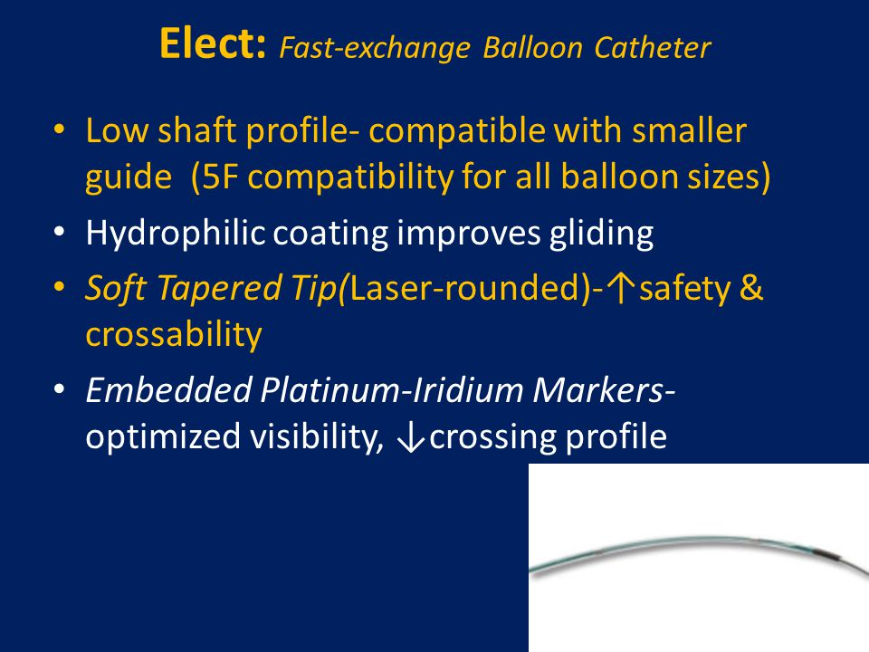 Elect: Fast-exchange Balloon Catheter