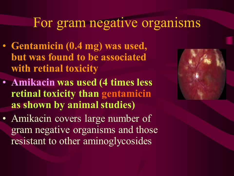 For gram negative organisms