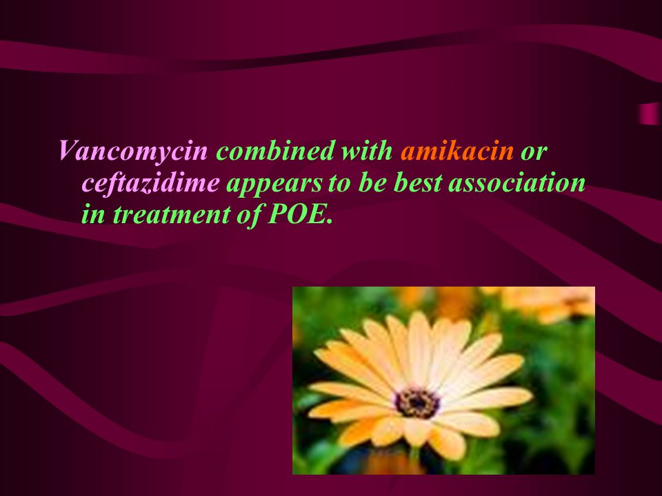 Vancomycin combined with amikacin or ceftazidime appears to be best association in treatment of POE.