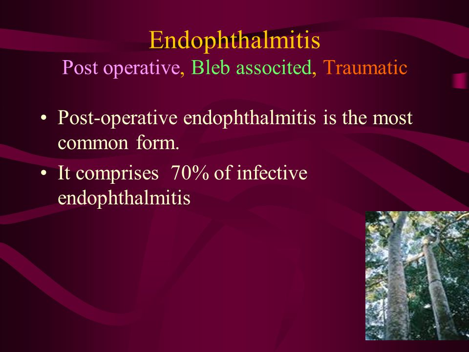 Endophthalmitis Post operative, Bleb associted, Traumatic