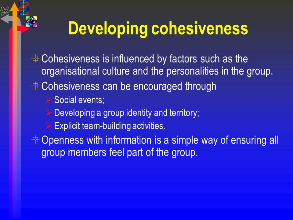 Developing cohesiveness