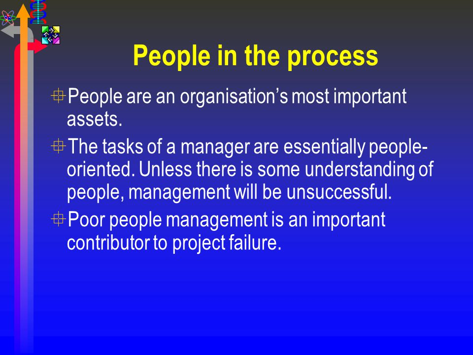 People in the process People are an organisation's most important assets.