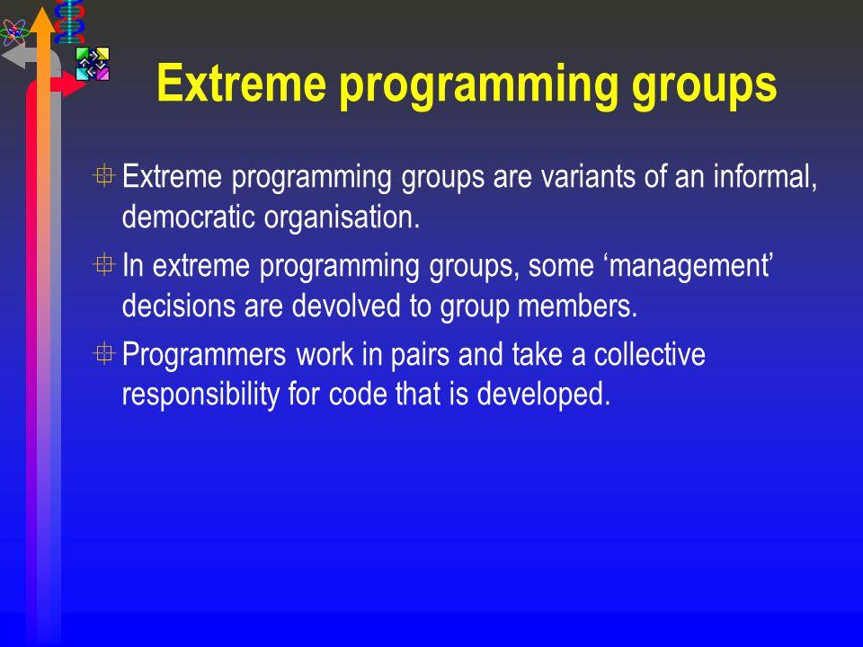 Extreme programming groups