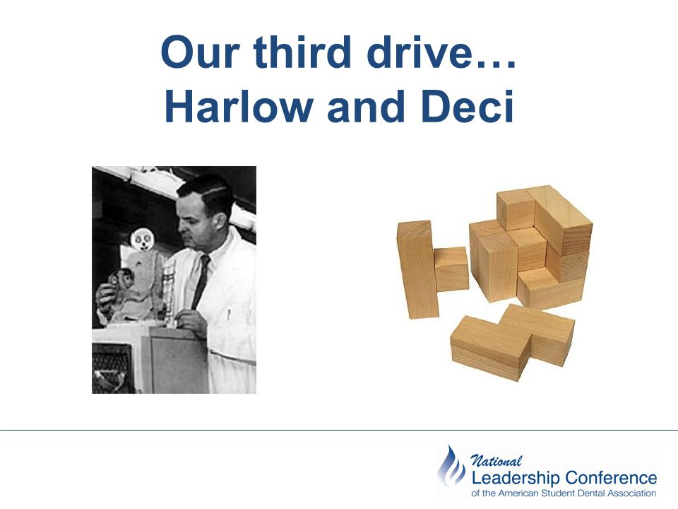 Our third drive… Harlow and Deci