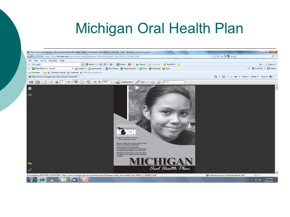 Michigan Oral Health Plan