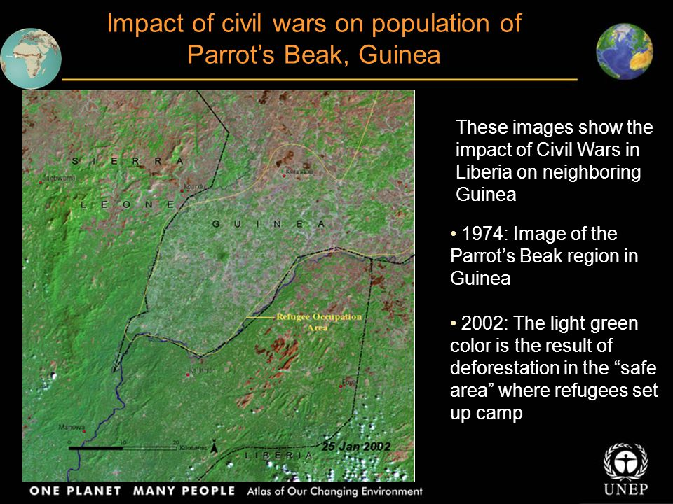 Impact of civil wars on population of Parrot's Beak, Guinea