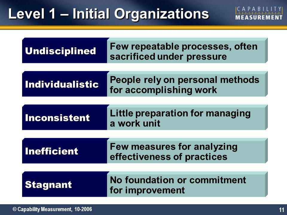 Level 1 – Initial Organizations