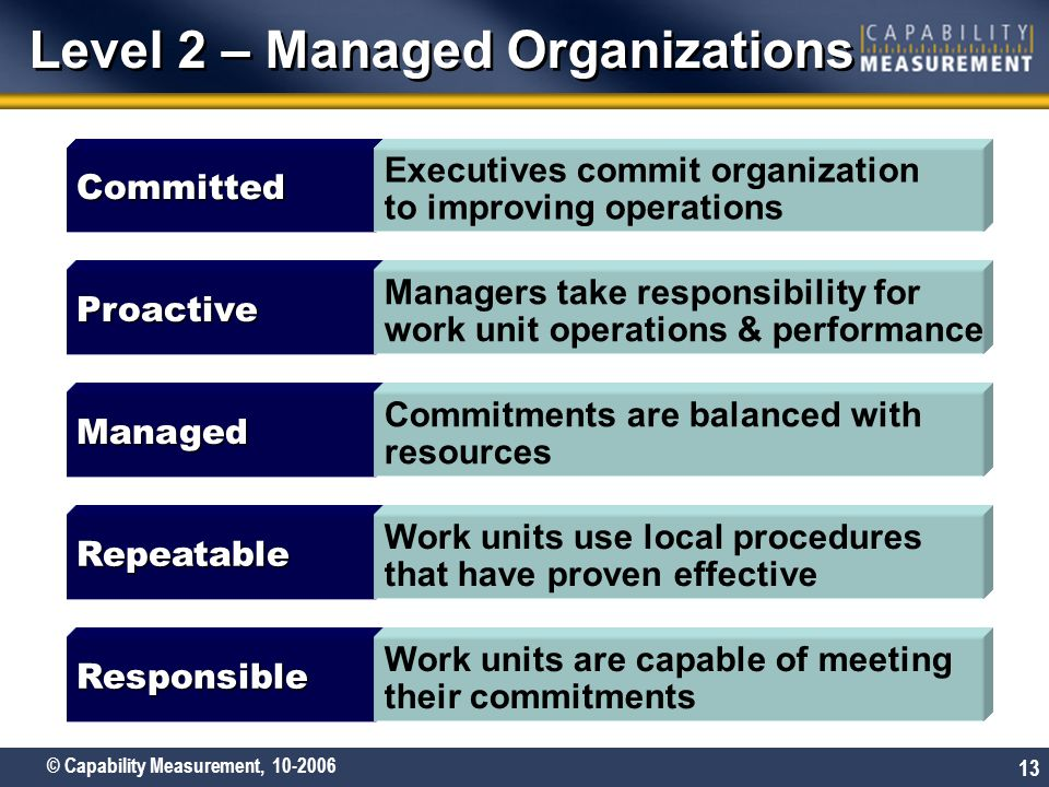 Level 2 – Managed Organizations