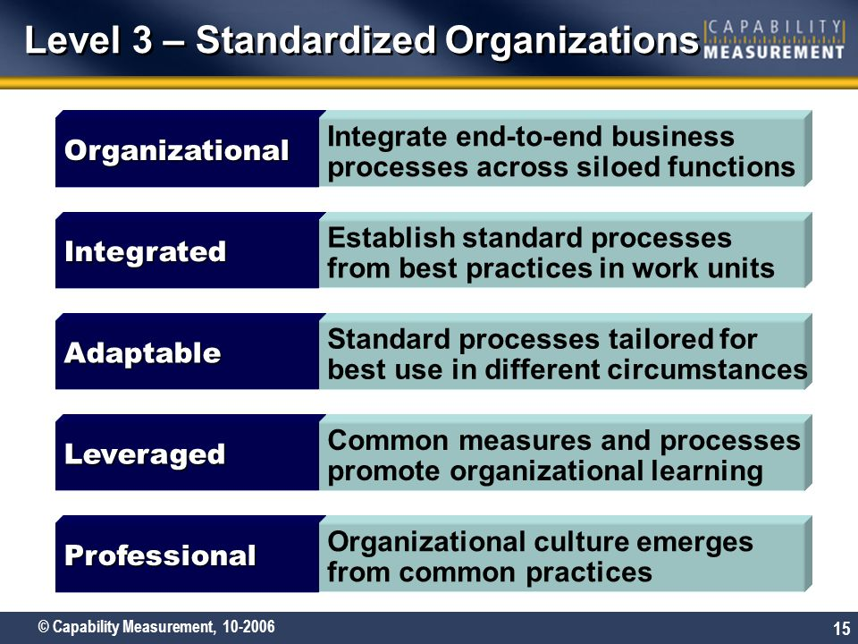 Level 3 – Standardized Organizations