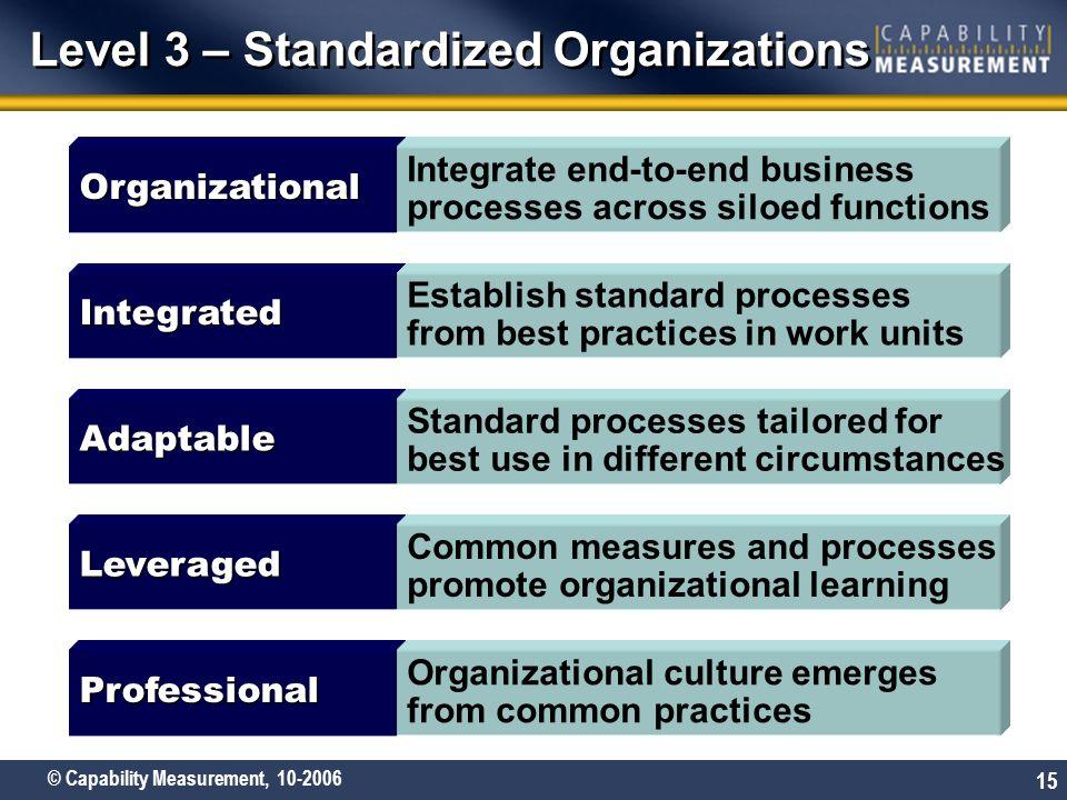 Level 3 – Standardized Organizations