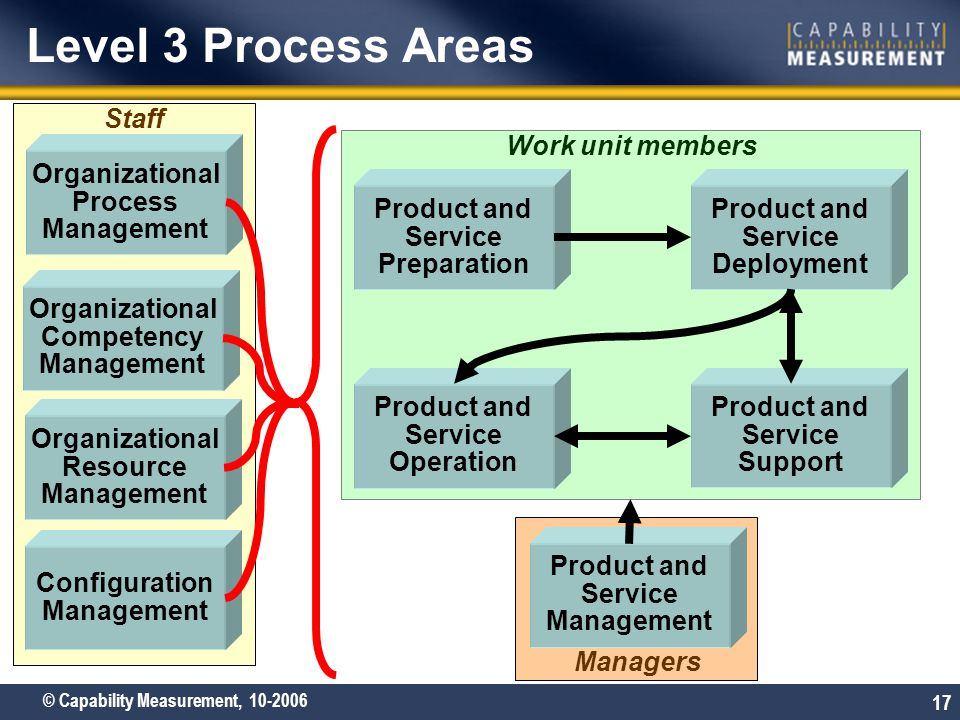 Level 3 Process Areas Staff Work unit members Organizational Process