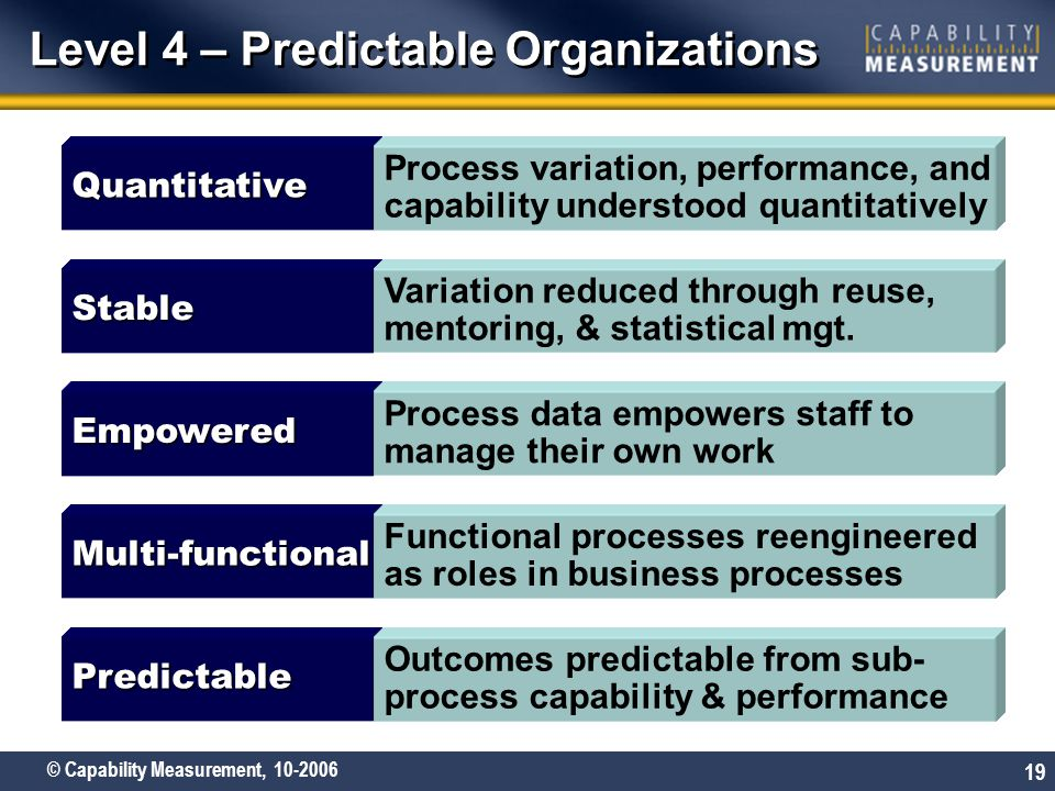 Level 4 – Predictable Organizations