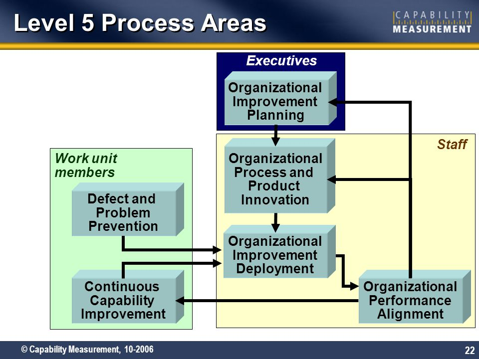 Level 5 Process Areas Executives Organizational Improvement Planning