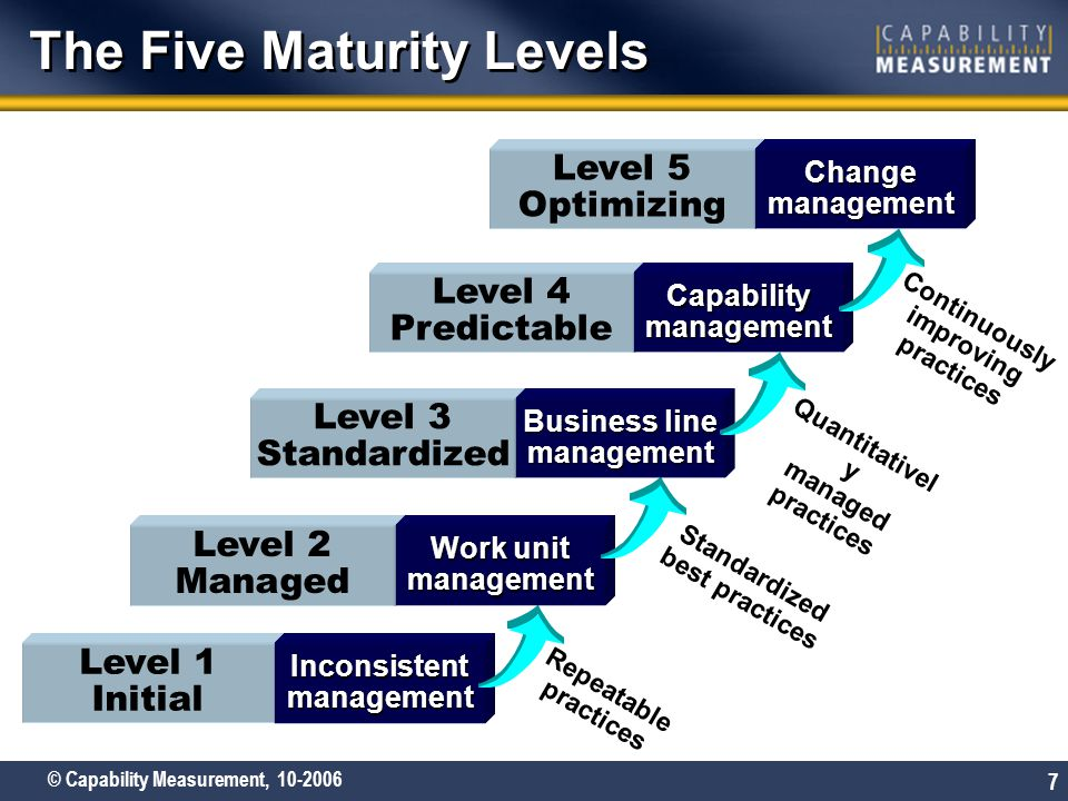 The Five Maturity Levels