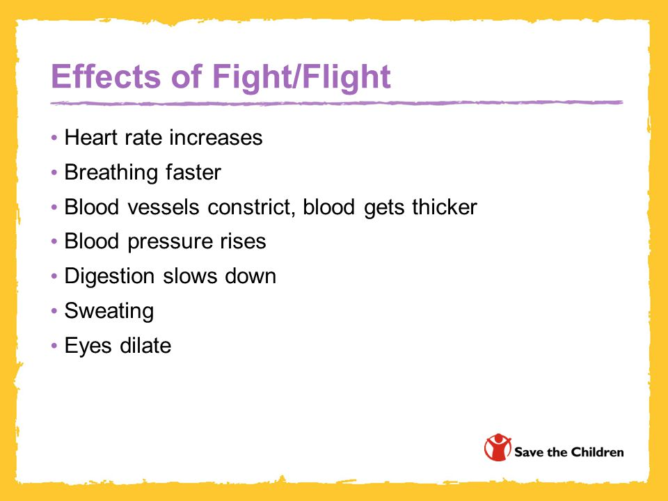 Effects of Fight/Flight