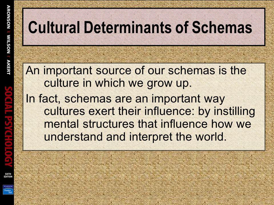 Cultural Determinants of Schemas