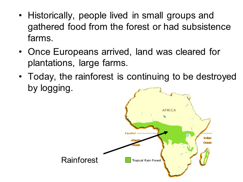 Once Europeans arrived, land was cleared for plantations, large farms.