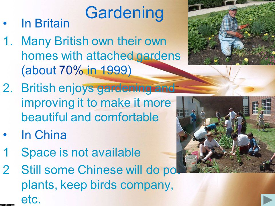 Gardening In Britain. Many British own their own homes with attached gardens (about 70% in 1999)