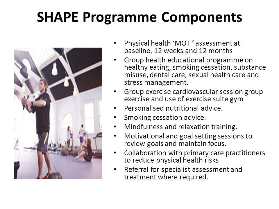 SHAPE Programme Components