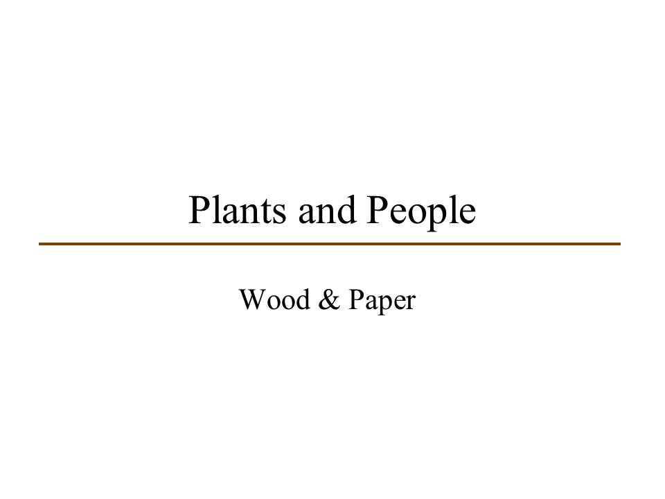 Plants and People Wood & Paper