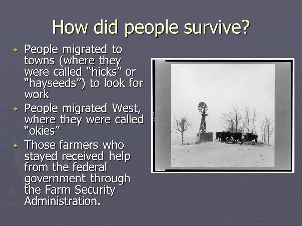 How did people survive People migrated to towns (where they were called hicks or hayseeds ) to look for work.