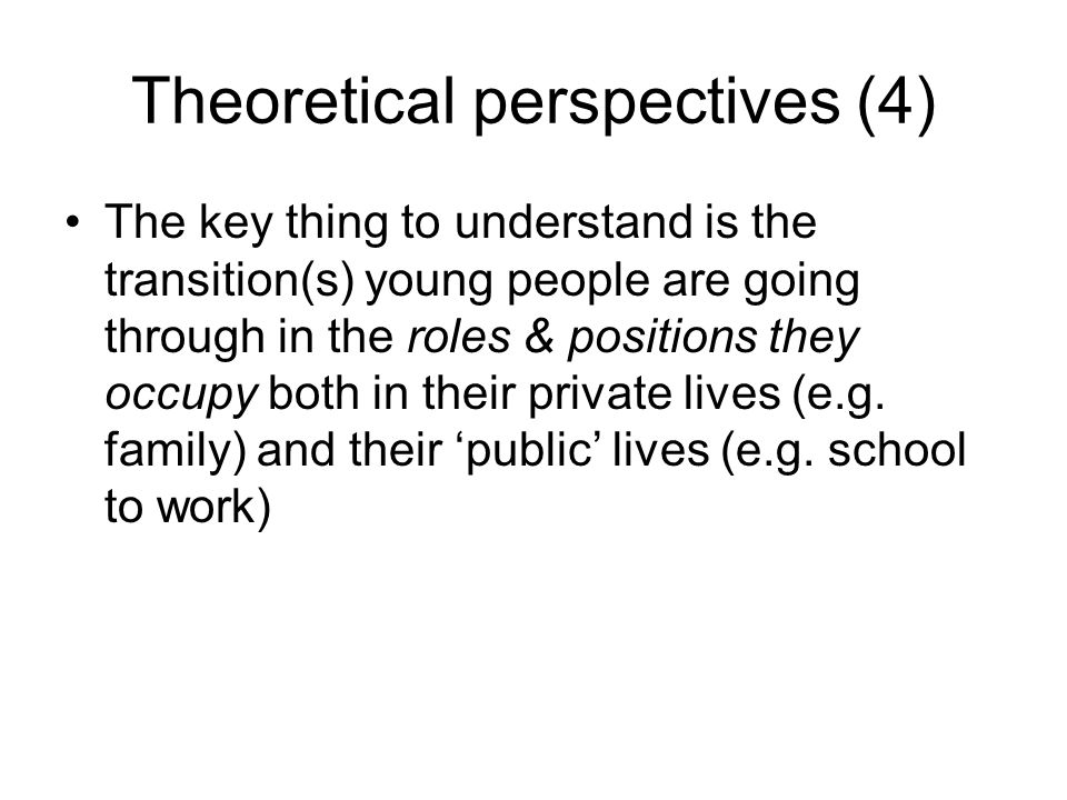 Theoretical perspectives (4)