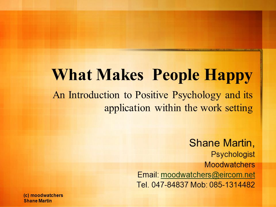 What Makes People Happy An Introduction to Positive Psychology and its application within the work setting