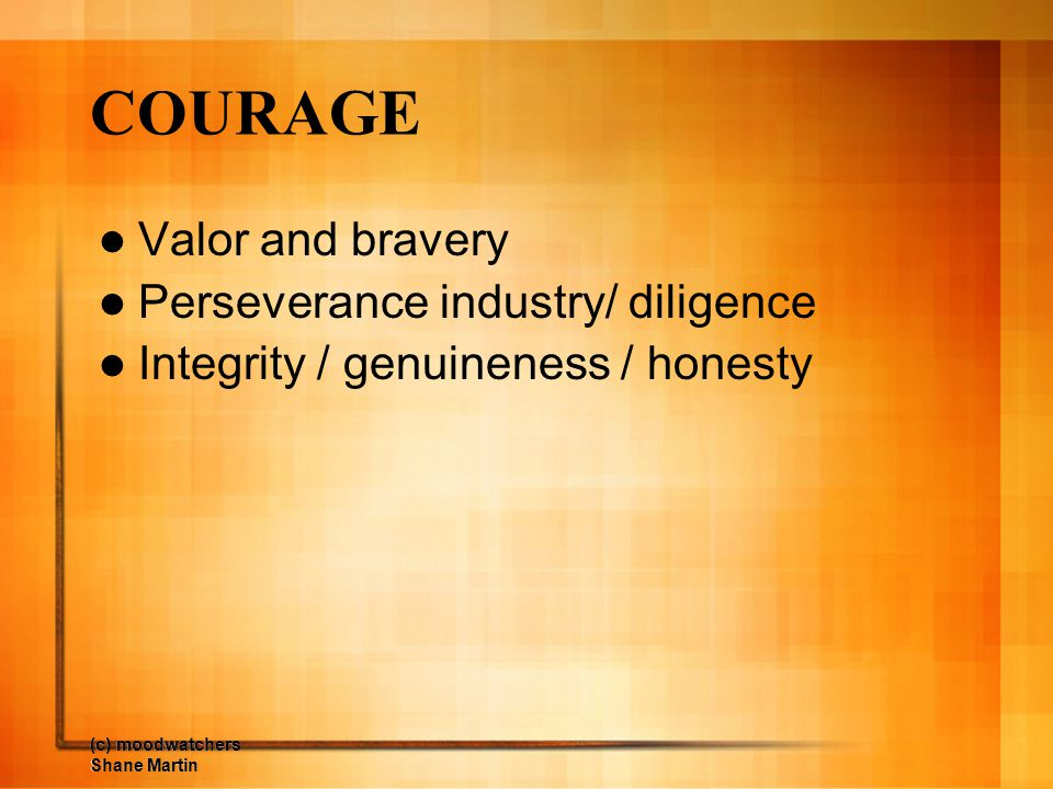 COURAGE Valor and bravery Perseverance industry/ diligence
