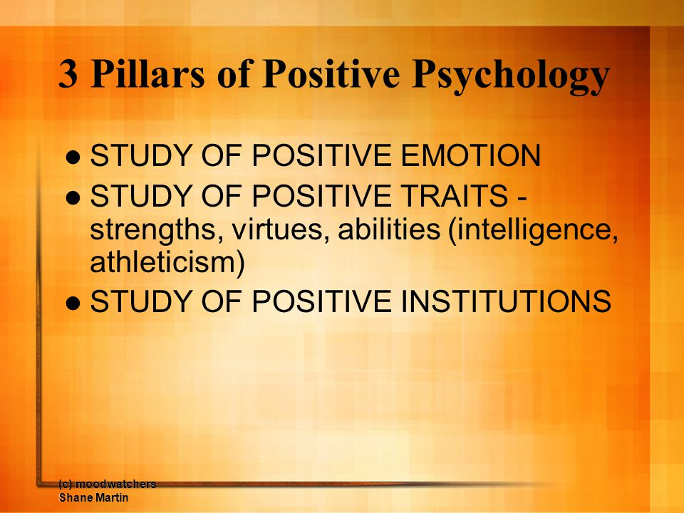 3 Pillars of Positive Psychology