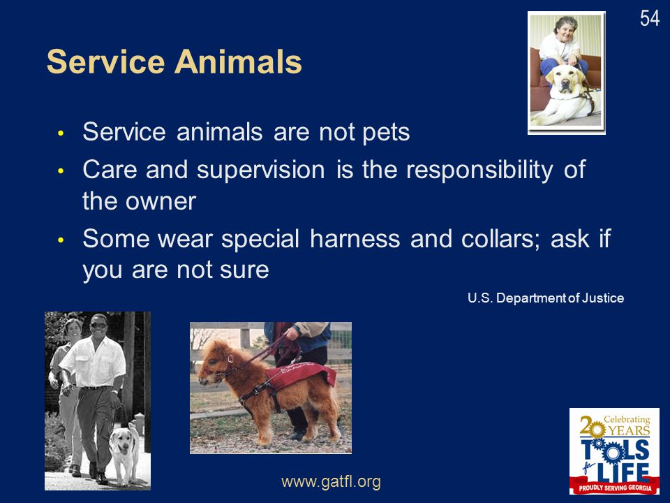 Service Animals Service animals are not pets