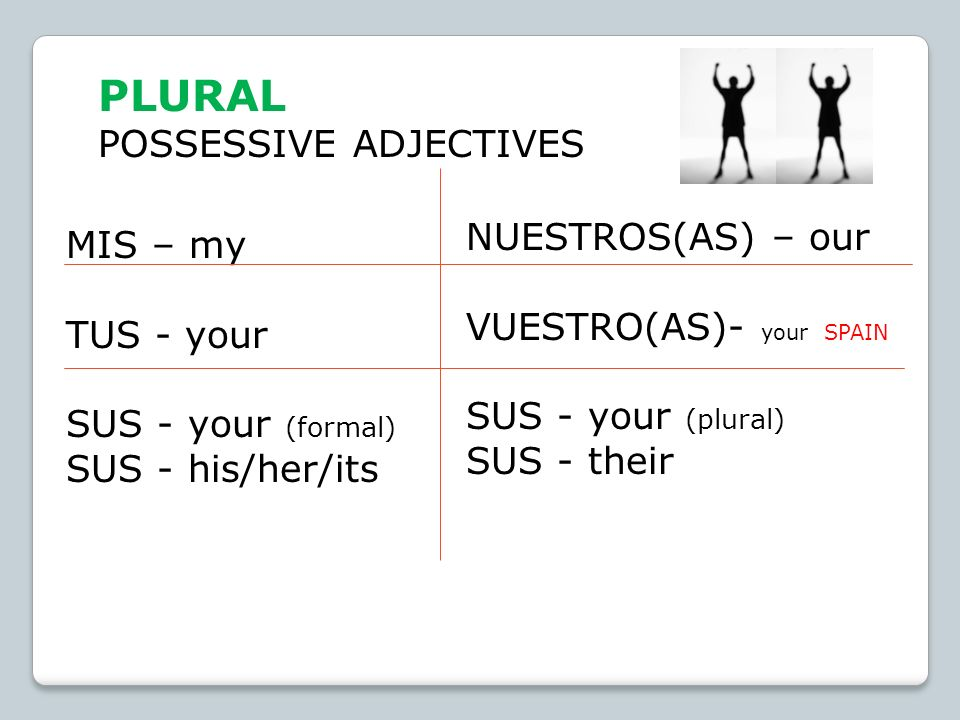 PLURAL POSSESSIVE ADJECTIVES NUESTROS(AS) – our MIS – my