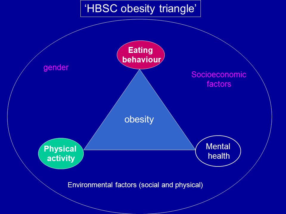'HBSC obesity triangle'