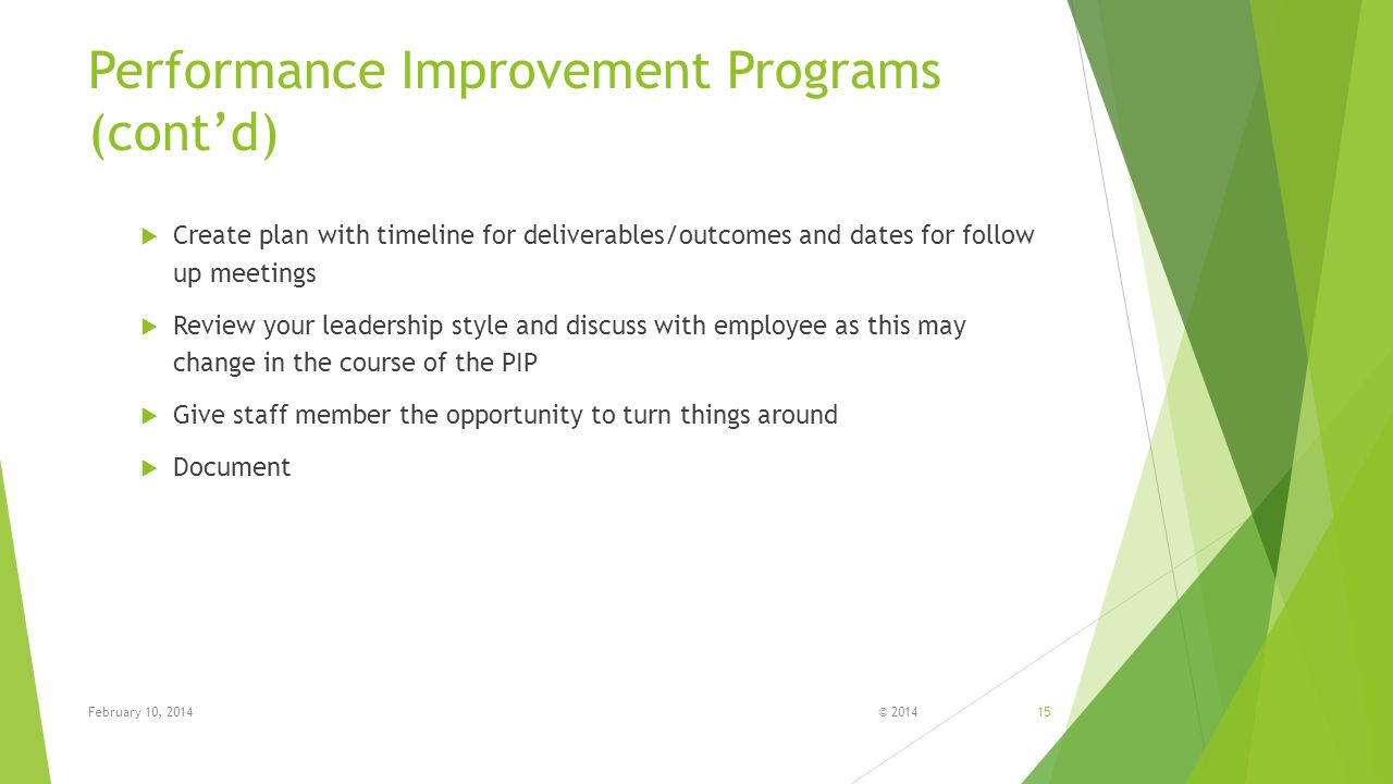 Performance Improvement Programs (cont'd)