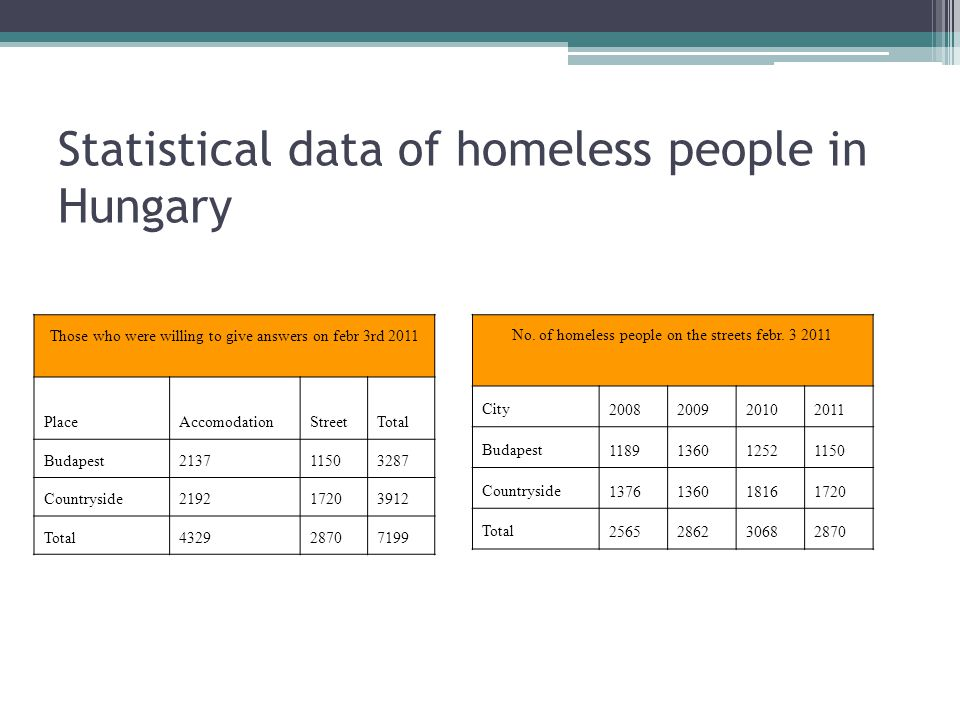 Statistical data of homeless people in Hungary