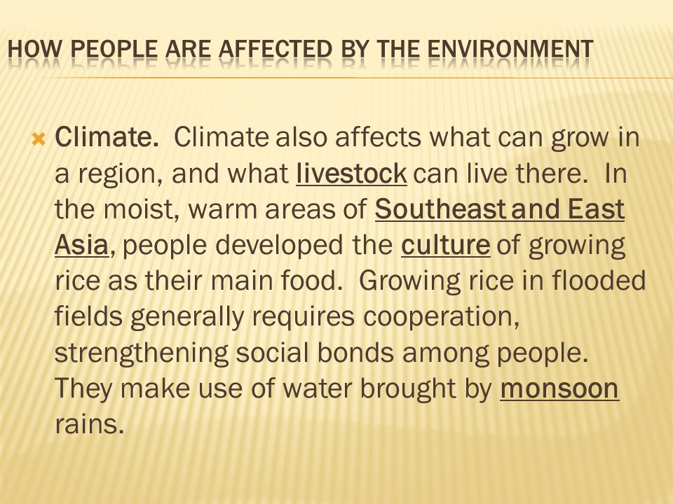 How People are Affected by the Environment