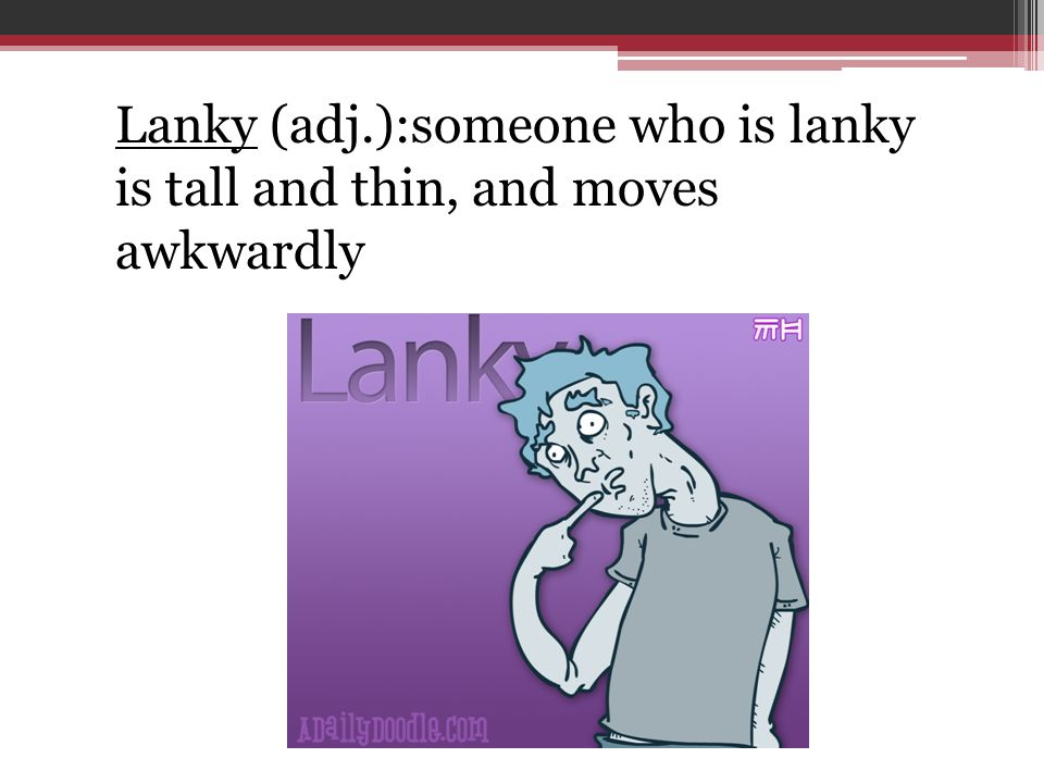 Lanky (adj.):someone who is lanky is tall and thin, and moves awkwardly